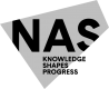 National Arts Strategies logo