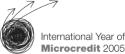 United Nations International Year of Microcredit logo