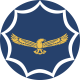 South African Air Force logo