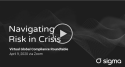 Navigating Risk in Crisis logo